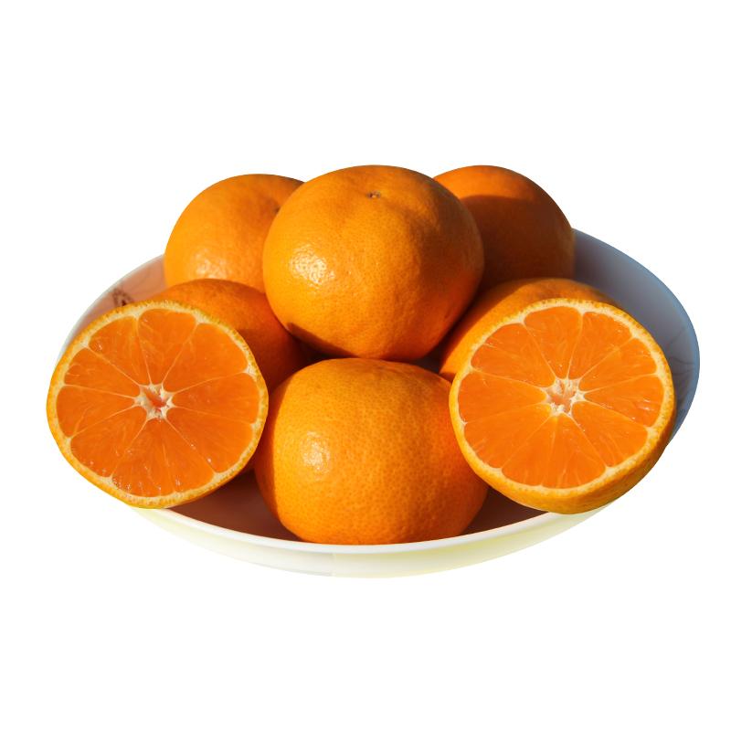 江西脐橙 5斤装